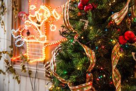 NYC纽约国际太原早教中心:【活动预告】北欧圣诞狂欢夜