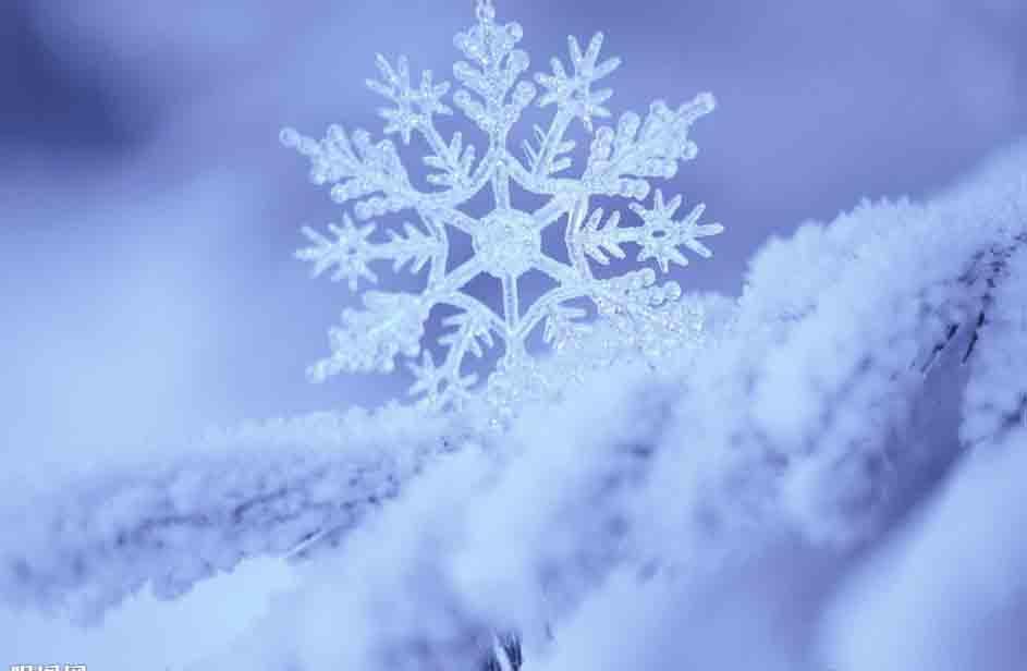NYC纽约国际平谷早教中心冬令营预告
