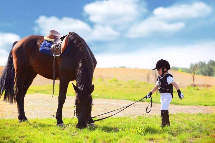 NYC纽约国际西安高新早教中心:马背上的少年英雄们,又到你们大显身手的时刻了!