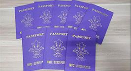 NYC纽约国际杭州早教中心:【新年福利】你有一本pongo护照待领取~
