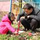NYC纽约国际武汉早教中心:小小植树员活动回顾