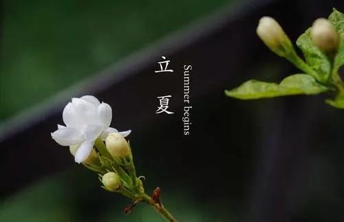 NYC纽约国际北京五棵松早教中心:会员福利—悠贝故事会!